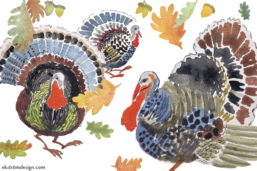 Five Things You Don't Need to Do to Your Holiday Turkey