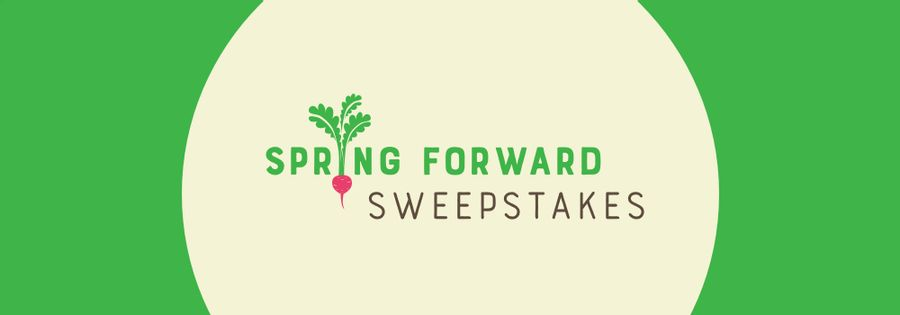 Spring Forward Sweepstakes Official Rules