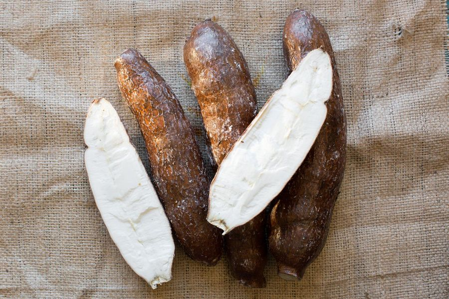 A User's Guide to Yuca